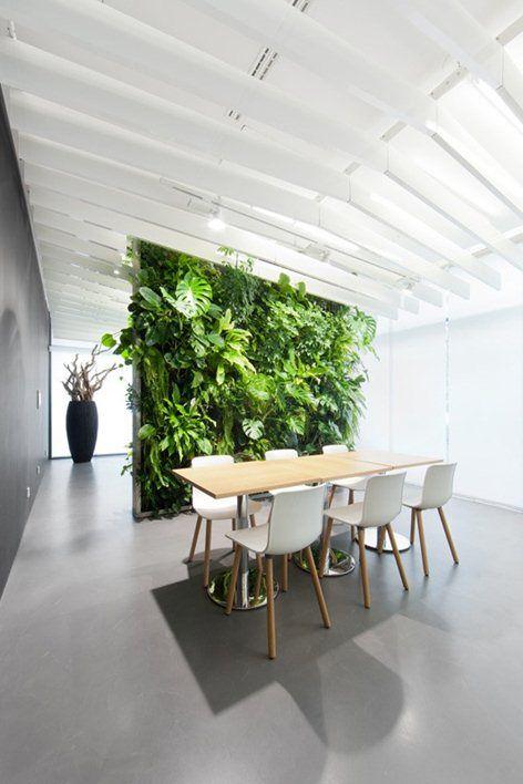 Soho podomoro city green walls ideas for Green office interior design